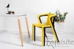 Scaun modern pentru terasa din plastic, Exquisite, diverse culori7